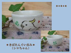 Pottery262