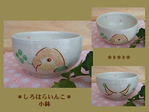 Pottery427